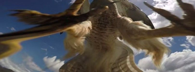 Impresionante vídeo de un avión atacado por un halcón