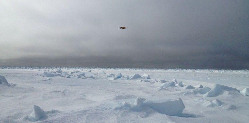Nuevo dron para controlar el cambio climático en el ártico