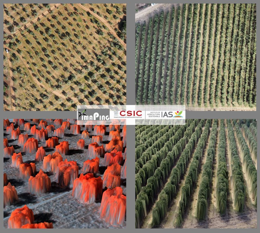 dron-agricultura-cordoba-1