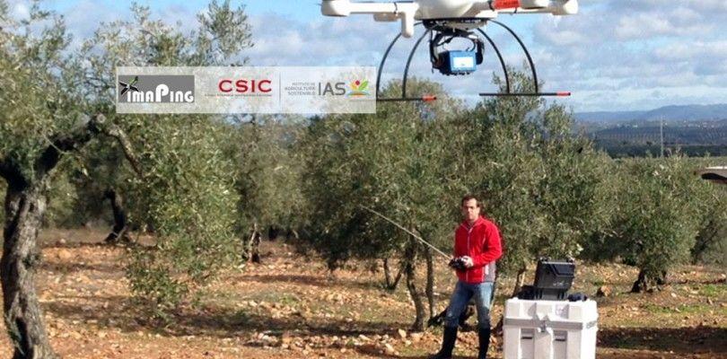 Tecnología española para medir área, altura y volumen de los árboles